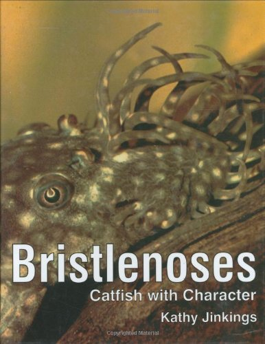 Bristlenoses: Catfish With Character by Brand: Tfh Pubns Inc