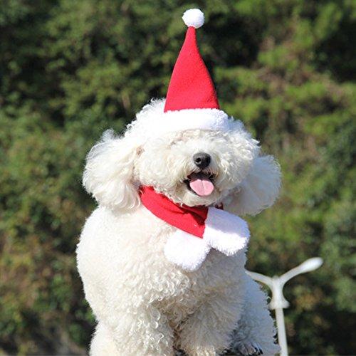 2pcs Pet Cat Dog Santa Hat Scarf Christmas Xmas Red Holiday Costume - 2