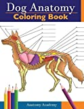 Dog Anatomy Coloring Book: Incredibly Detailed