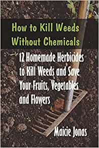 how to kill weeds without chemicals 12 homemade herbicides to kill weeds and save your fruits. Black Bedroom Furniture Sets. Home Design Ideas