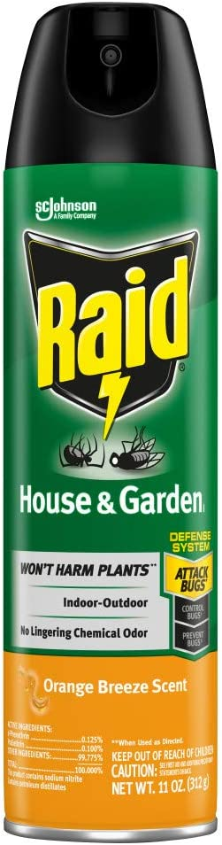 Raid House & Garden Insect Killer Spray, For Listed Ant, Roach, Spider, For Indoor & Outdoor Use, Orange Scent, 11 Oz, Pack of 1
