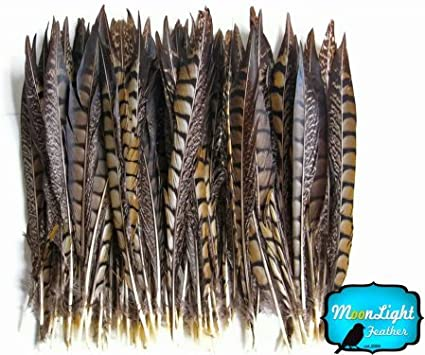 "18/"" Ivory Pheasant Tail Feathers 16/"" Sold by the Piece"