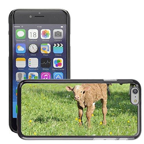 """Bild Hart Handy Schwarz Schutz Case Cover Schale Etui // M00134573 Beef Jungtier Tier Tier // Apple iPhone 6 PLUS 5.5"""""""