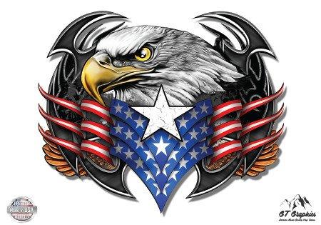 Eagle American Flag Patriotic - 3
