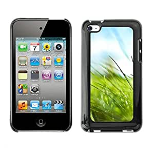 Soft Silicone Rubber Case Hard Cover Protective Accessory Compatible with Apple IPod Touch 4 - Nature Grass Macro