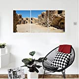 Liguo88 Custom canvas Galaxy Wall Hanging One of Abandoned Sets of the Movie in Tunisia Desert Phantom Galaxy Wars Themed Bedroom Living Room Decor Brown Blue