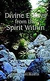 Divine Essays from the Spirit Within, Darryl Williams, 0759601313