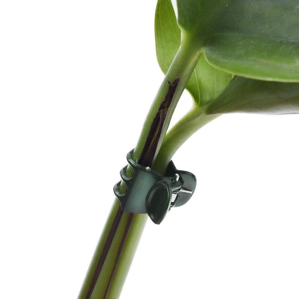 Clip per Supporto Piante Clip per Stelo di Fiori per Supporto Orchidea KINGLAKE 100 Pezzi Clip per Orchidee Clip per Giardino