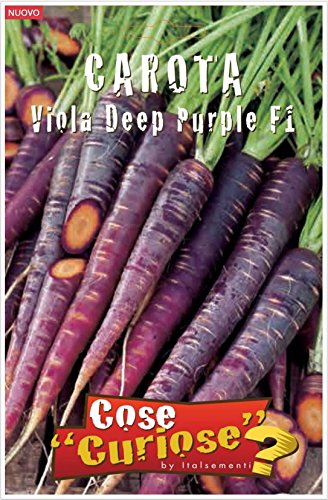Compra online i semini delle carote viola