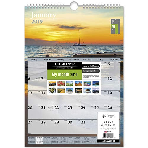 AT-A-GLANCE 2019 Monthly Wall Calendar, 12 x 17, Medium, Scenic, White (DMW20028)
