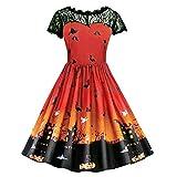 HHei_K Womens Happy Halloween Vintage See-Through Lace Patchwork Pumpkin Devil Print Halloween Party Swing Dress
