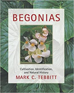 Begonias Cultivation Identification And Natural History