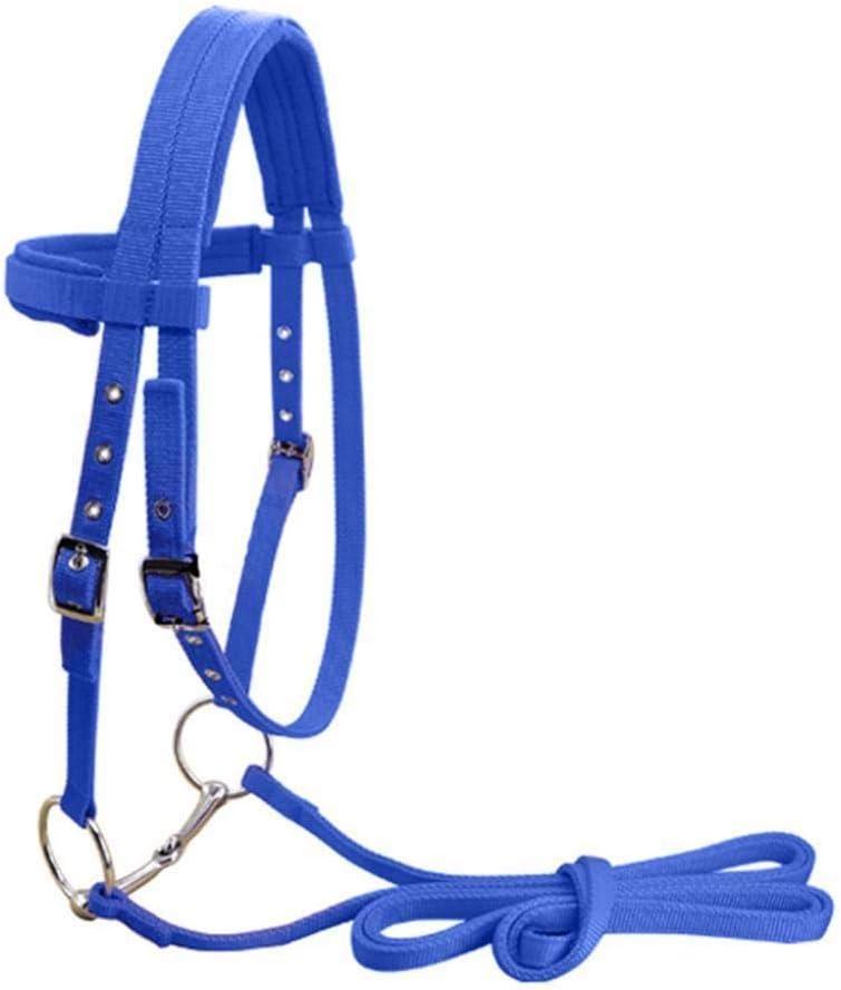 CLBING Cabezada para Caballos Cabestros Ecuestres De Caballo Ajustables Y Brida De Caballo Halter con Cinturón De Rienda Fijo,Blue-M