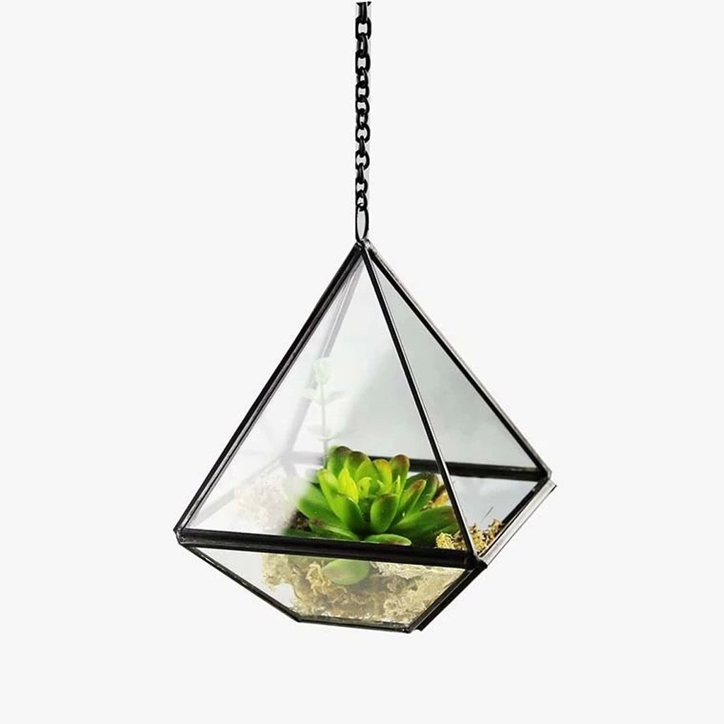 A YUAN Modern Artistic Clear Glass Geometric Terrarium Five-surfaces Diamond Succulent Fern Moss Terrarium with Loop Hanging flowerpots (Size   A)