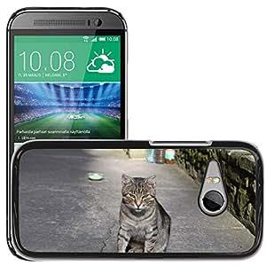 Super Stella Slim PC Hard Case Cover Skin Armor Shell Protection // M00144741 Cat Animal Pet House Kitten Feline // HTC One Mini 2 / M8 MINI / (Not Fits M8)