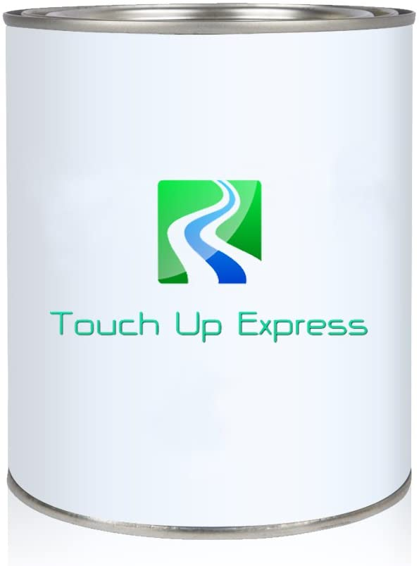 Touch Up Express Paint