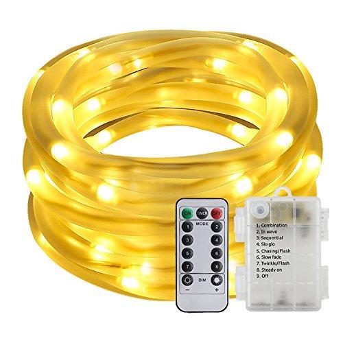 Gold Led Rope Lights in Florida - 3