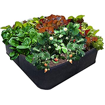 Amazoncom Victory 8 Fabric Raised Garden Bed 2x2 Feet Patio
