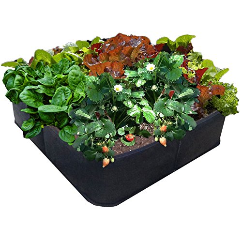 Victory 8 Garden Green Gardening Raised Bed, Fabric Pots - 2 x 2 Ft Square