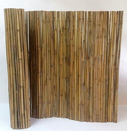 Tonkin Bamboo Fence, 3/4