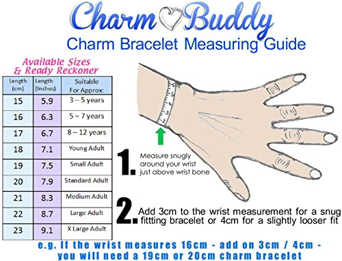 Charm Buddy Super Daughter Pink Silver Crystal Good Luck Pandora Style Bracelet With Charms Gift Box by Charm Buddy (Image #3)