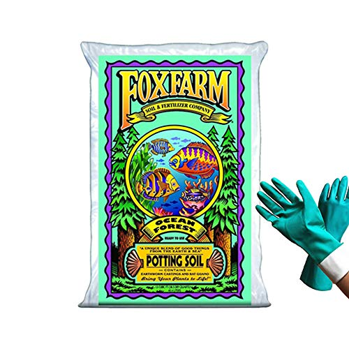 FoxFarm Ocean Forest Potting Soil Organic Mix Indoor Outdoor For