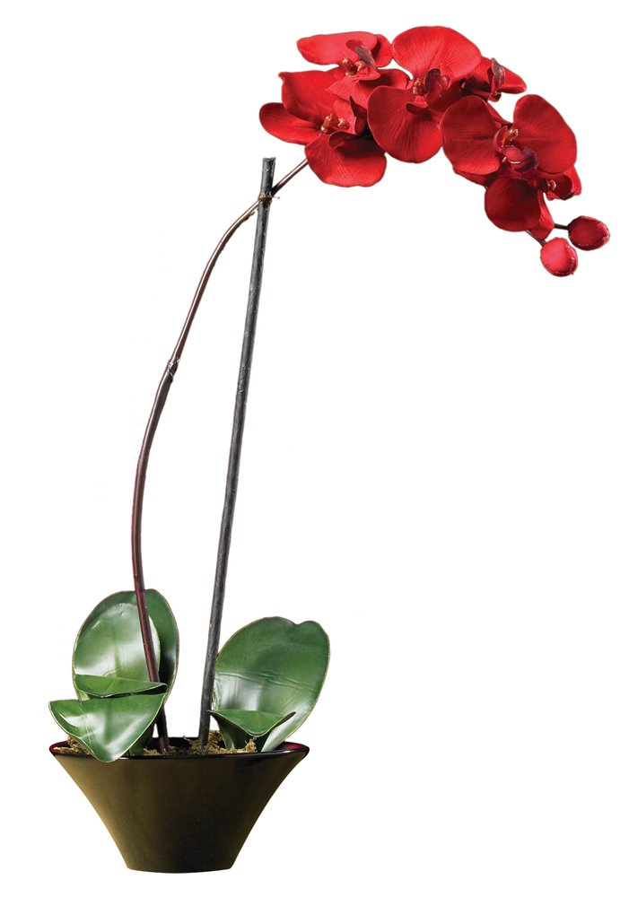 Nearly Natural 4859 Holiday Phalaenopsis Orchid Arrangement, Red