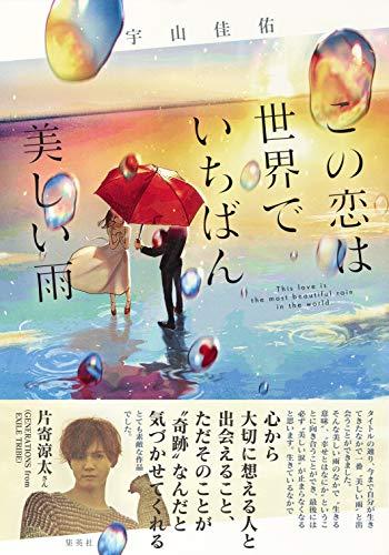 この恋は世界でいちばん美しい雨 (単行本)