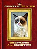 In a world filled with inspirational know-it-alls and quotable blowhards, only one figure is indifferent enough to tell the cranky truth: Grumpy Cat. Following the success of her New York Times bestselling debut, everyone's favorite disgruntled felin...