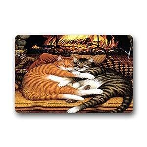 """Custom art cat painting Doormat Outdoor Indoor 23.6""""x15.7"""" about 59.9cmx39.8cm"""
