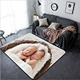 Vanfan Design Home Decorative Twin Newborns in a basket Modern Non-Slip Doormats Carpet for Living Dining Room Bedroom Hallway Office Easy Clean Footcloth