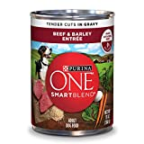 Cheap Purina ONE SmartBlend Tender Cuts Beef & Barley Entree in Gravy Adult Wet Dog Food – 13 oz. Can