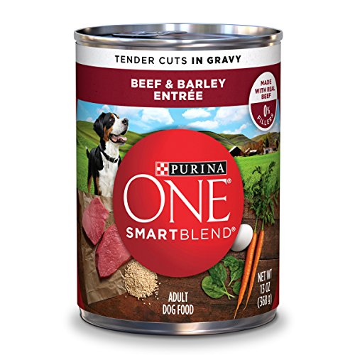 Purina ONE SmartBlend Tender Cuts Beef & Barley Entree in Gr