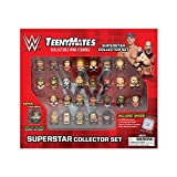 "TeenyMates WWE Superstar Collector Set, 27 WWE TeenyMates 1"" Figures"