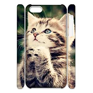 Cell phone 3D Bumper Plastic Case Of Cute Cat For iPhone 5C