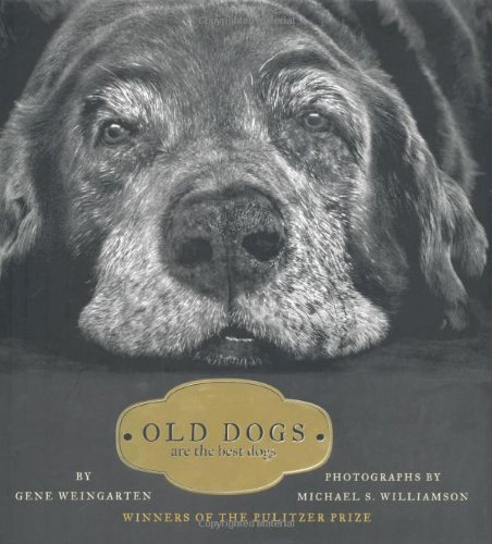 Old Dogs: Are the Best Dogs (Best Bond Girl Of All Time)