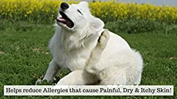 Natural, Wild Alaskan, Salmon Fish Oil Supplement - For Dogs & Cats - Omega 3 Plus DHA & EPA Fatty Acids - No Fishy Smells - Promotes Healthy Coat & Joint Function - Softgels - Made In USA