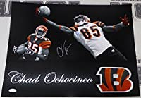 Chad Ochocinco Johnson Signed Bengals Football 16x20 Photo - JSA Authentic Picture Auto