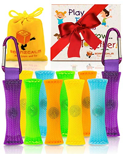 Born2Calm ADHD Fidget Toys Stress and Anxiety Relief - Pack of 10 Silent Sensory Fidgets for Classroom as Figits Sensory Toys for Kids with Carrying Pouch, 2 Carabiners and Bonus Paperback Story from Born2Calm