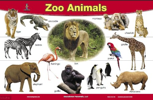 Zoo-Animals-Placemat