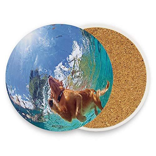 Jidmerrnm Underwater Photo of Golden Labrador Retriever Puppy Swimming in Pool Happy Absorbent Ceramic Stone Coaster 1 Piece, Drink Spills Coasters - Golden Retriever Puppy Photo