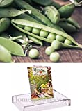 buy Homegrown Pea Seeds, 130 Seeds, Alaska Pea now, new 2019-2018 bestseller, review and Photo, best price $5.10