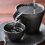 Sizzle Sake Set