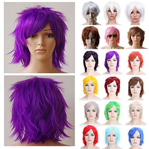 Anime Cosplay Wig Purple Unisex Short Wigs with Oblique Bangs Straight Fluffy Hair with Volume Up Hair Tail Heat Resistant Synthetic Fiber]()