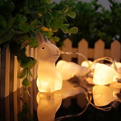 LEDMOMO LED String Light 10 LEDs Rabbit Bunny Warm White Light Battery Powered 65 inch