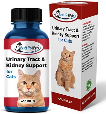 BestLife4Pets Cat UTI Urinary Tract Infection Treatment - All Natural Kidney Care and Support Helps with Incontinence and Frequent Urination, Improves Renal Health and Bladder Control (450 Pills)