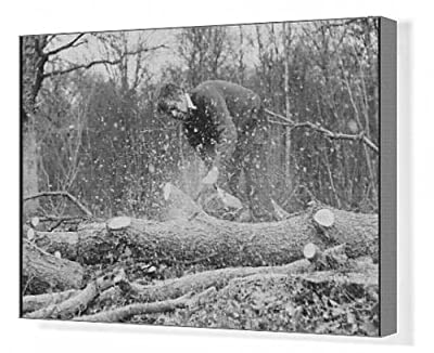 Canvas Print Of Using A Chainsaw