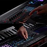 Roland FANTOM-6 Music Workstation 61-key