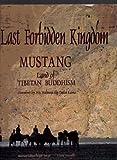 Last Forbidden Kingdom