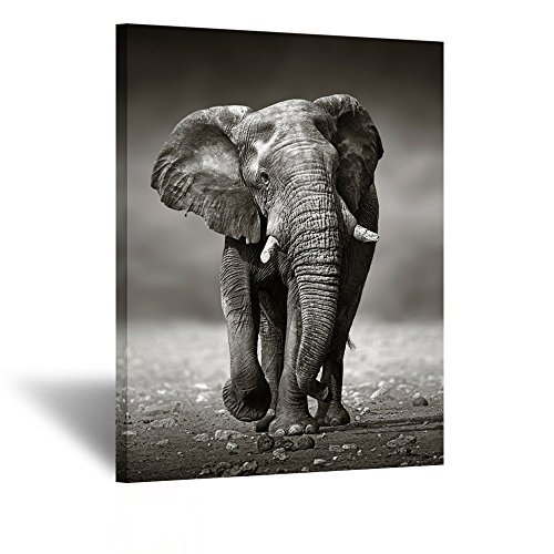 Kreative Arts Black and White Elephant Canvas Wall Art Painting Pictures Print On Canvas Animal The Picture for Home Modern Decoration 24x32inch